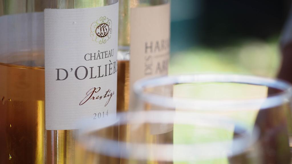Chateau d'Olliers