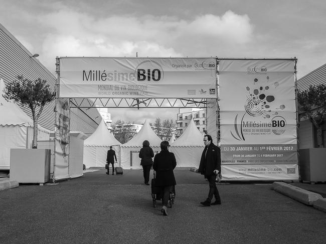 Millesime Bio - Entrance-2010631
