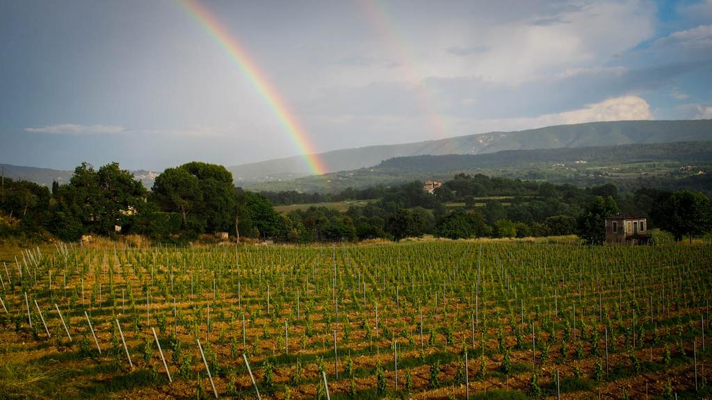 Provence rainbow